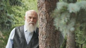 Il ritratto dell'uomo anziano abbraccia un tronco di albero archivi video