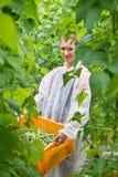 Il ritratto della cassa di trasporto sorridente del ricercatore femminile di verde è Fotografia Stock Libera da Diritti