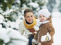 Il ritratto della madre felice ed il bambino nell'inverno parcheggiano Fotografie Stock