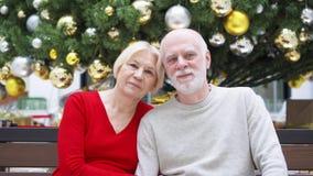 Il ritratto delle coppie senior vicino ha decorato l'albero di Natale al centro commerciale Seduta e sorridere felici della famig video d archivio