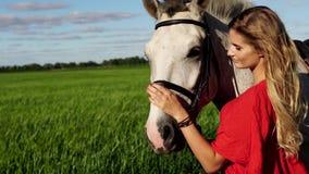 Il ritratto di giovane bella donna dreesed nel rosso con il cavallo bianco vicino al campo stock footage