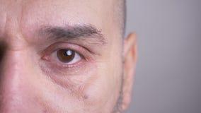 Il ritratto di profilo del primo piano del mezzo ha invecchiato l'uomo caucasico che esamina diritto la macchina fotografica con  video d archivio
