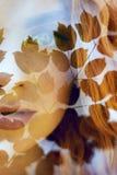 Il ritratto di una donna con una doppia esposizione, la ragazza e la natura vaga della foto non è a fuoco Le foglie sulla donna fotografie stock