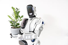 Il robot astuto sta stando con il vaso di fiore Fotografia Stock Libera da Diritti