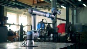 Il robot di collaborazione sta muovendosi nelle direzioni differenti stock footage
