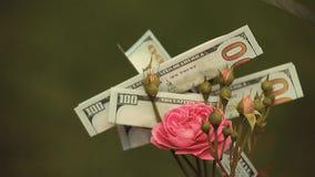 Il rosa è aumentato dollaro dei soldi del fiore nessuno video d archivio