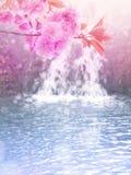 Il rosa dell'albero di Sakura fiorisce sui precedenti della cascata Fotografie Stock