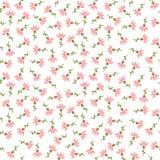 Il rosa fiorisce il modello senza cuciture Fotografia Stock Libera da Diritti
