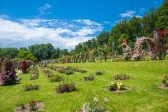 Il roseto Beutig in Baden-Baden fotografia stock