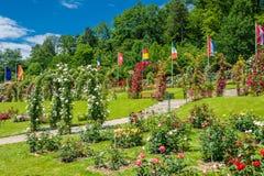 Il roseto Beutig in Baden-Baden immagine stock