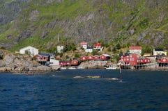 Il rosso alloggia l'isola Norvegia di Lofoten del villaggio del pescatore Immagine Stock