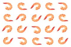 Il rosso ha cucinato il gamberetto della tigre o del gamberetto isolato su fondo bianco fotografie stock