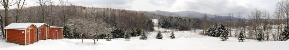 Il rosso sparge il panorama della tempesta dell'inverno immagini stock libere da diritti
