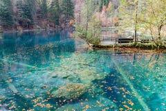 Il rosso va al parco naturale blu del lago Blausee/, Kandersteg, Switze Fotografie Stock
