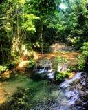 Il Ruines di Palenque dentro fotografia stock libera da diritti