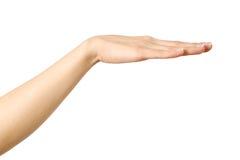 Il ` s della donna ha allungato la mano con la palma aperta Fotografia Stock
