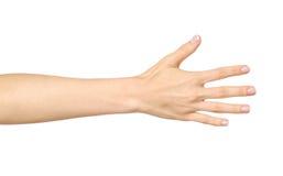Il ` s della donna ha allungato la mano con la palma aperta Fotografia Stock Libera da Diritti