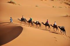 Il Sahara Fotografia Stock Libera da Diritti
