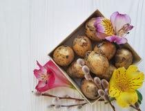 Il salice naturale, primavera di alstroemeria del fiore della morbidezza della quaglia eggs Pasqua su una scatola di legno bianca Fotografia Stock Libera da Diritti