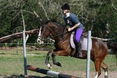 Il salto del cavallo fotografie stock libere da diritti