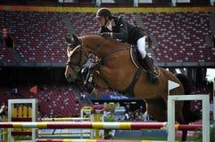 Il salto del cavallo Immagini Stock Libere da Diritti