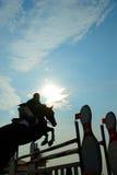 Il salto del cavallo Immagine Stock Libera da Diritti