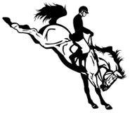 Il salto del cavallo Immagini Stock