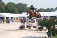 Il salto del cavallo fotografie stock