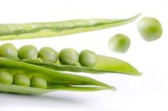 Il salto verde Fotografia Stock
