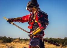 Il samurai in un campo in armatura antica tira l'attacco della spada Immagine Stock