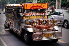 Il sangue puro di Filippine fotografia stock