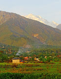 Il seasonSnow pring scenico di s ha alzato l'Himalaya verticalmente Kangra  Immagine Stock Libera da Diritti