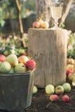 Il secchio dello zinco delle mele si chiude su Immagine Stock