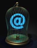 Il segno di Internet ha concluso in una gabbia dell'oro sotto la serratura Fotografia Stock