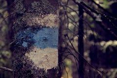 Il segno sull'albero è blu Immagini Stock Libere da Diritti
