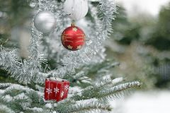 Il segreto del Natale Immagine Stock Libera da Diritti