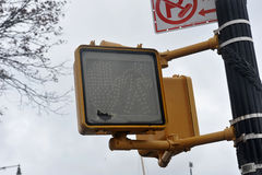 Il semaforo è andato fuori nella zona di Sheepsheadbay Fotografia Stock