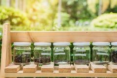 Il seme in barattoli sugli scaffali di legno L'ecologia conserva il concetto Fotografie Stock Libere da Diritti