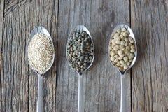Il seme sano gradisce i grani Fotografie Stock