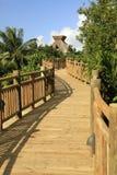 Il sentiero costiero alla maya di Vidanta Riviera Fotografie Stock
