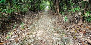 Il sentiero per pedoni con la foresta oltre a immagine stock libera da diritti