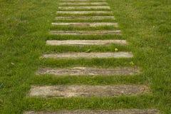 Il sentiero per pedoni dalle linee di legno Immagine Stock
