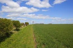 Il sentiero per pedoni interurbano di modo dei wolds nella primavera Immagini Stock