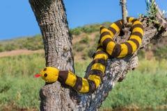 Il serpente tricottato falsificazione appende nel tronco di albero Fotografia Stock