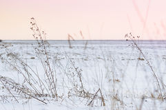 Il settore coperto di neve, l'inverno severo condiziona Fotografia Stock