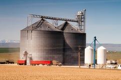 Il silo carica il cereale coltivato dell'azienda agricola di camion dei semi Fotografia Stock