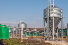 Il silos di grano galvanizzato del ferro in un bestiame-allevamento coltiva Fotografie Stock