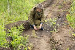 Il silvicoltore coltiva un albero Gli agricoltori stanno piantando gli alberi Immagine Stock
