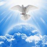 Il simbolo della colomba di bianco di amore e di pace vola sopra pianeta Terra fotografie stock