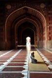 Il singolo uomo prega Fotografia Stock